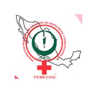 Federación Mexicana de Colegios de Obstetricia y Ginecología A.C.
