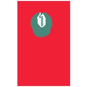 Colegio Mexicano de Especialistas de Ginecología y Obstetricia